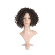 Short Curly Wigs for Black Women, Canvalite Unisex Fibre Short Curly Kinky Hair for Cosplay, Halloween, Daily, Party, Carnival