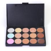 Prochive 15 Colour Concealer Contour Eye Face Professional Makeup Palette