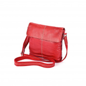 Eastern Counties Leather Womens/Ladies Paige Flap Pocket Handbag