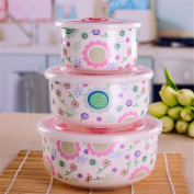 Porcelain lunch box with lid bone china oven lunch boxes, ceramic boxes (three),M