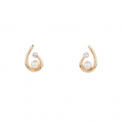 Annaleece 4252 Casual Earrings