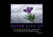 Motivational 3 - motivation - inspiration - Never Give Up - Lincoln Patz - A3 poster - print - picture