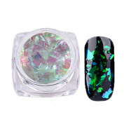 Beauty Nail Powder Nail Art Gorgeous Chameleon Mirror Powder Manicure Chrome Pigment Glitters 0.2g Lanspo