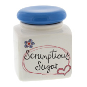 Scrumptious Sugar - Paper Salad Sugar Storage Canister Jar with blue lid