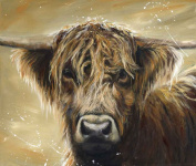 Canvas Cuties Colourful Hamish Highland Cattle Canvas