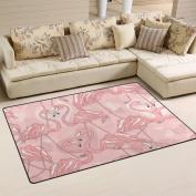 COOSUN Flamingos Pattern Area Rug Carpet Non-Slip Floor Mat Doormats for Living Room Bedroom 78.7 x 50.8 cm