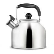 Whistling Tea Kettle - Surgical Stainless Steel Teapot for Stove Top - 3.7L/3.8l