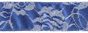 Wired Double Face Satin W/Lace Overlay Ribbon 2.5cm - 1.3cm X10yd