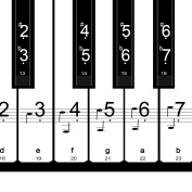 Pangda 2 Set Piano Stickers Key Keyboard Stickers Music Note Full Tool Set for 54, 61, 76, 88, White and Black Keys with Cleaning Cloth and User Guide