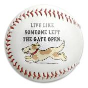 Dog Gate Open Size 9 Safety Soft Baseballs Bullet Ball Training Ball White