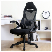 Zenith High Back Mesh Office Chair with Adjustable Armrest Lumbar Support Headrest Swivel Task Desk Chair