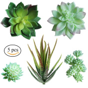 Supla Pack of 5 Assorted Artificial Echeveria Succulent Picks in Flocked Green and Green 10cm - 3.3cm wide for Floral Arrangement Christmas Accents