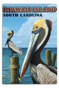Kiawah Island, South Carolina - Pelicans