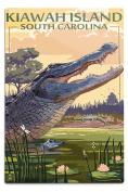Kiawah Island, South Carolina - Alligator Scene