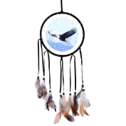 SOLEDI Dream Catcher Black 50cm^15.5cm Eagle Pattern Handmade Traditional Circular Net Home Decor Wall Car Hanging Ornament Gift