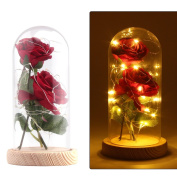 Konesky 2PCS Artificial Enchanted Rose with 20 Led Light in a Glass Dome Bell Jar Silk Red Rose Flower Warm White with Wooden Base DIY for Home Decor Holiday Project Party Wedding Gift