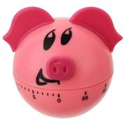 Cute Piggy Kitchen Timer