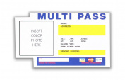 Fifth Element Multi Pass Sticker