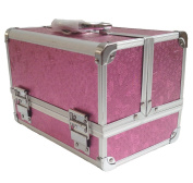 A-Express Pink Rose Cosmetic Jewellery Makeup Beauty Box Case