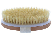 Dry Body Brush - 100% Natural Bristles - Cellulite Treatment, Increase Circulation and Tighten Skin