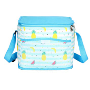 Cute Fruits Insulated Picnic Cooler Tote Lunch Bag for Women Girls Office Travel Beach Stylish Light Blue