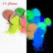 11 Colours Pack Glow In The Dark Pigment Powder Luminous Powders - 10g Each,110g Total