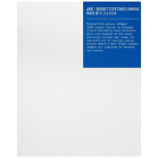 JAS : Budget Canvas : 20x25cm : Pack of 5