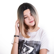 Ombre Wigs For Women 70% OFF Short Bob Wig Hair Gradient Wigs with a Free Wig Cap & Storage Gift Box Wrap Synthetic Wigs(Four Colours Opion