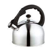 Homeinart Whistling Tea Kettle Stainless Tea Kettles Stovetop 2.5l