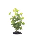 Marina Ecoscaper Hydrocotyle Silk Plant Plant, 20cm