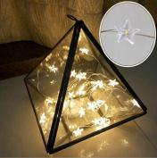 Outdoor LED String lights garden, 10 LED Star Light Cosy String Fairy Lights For Bedroom Xmas Wedding Party