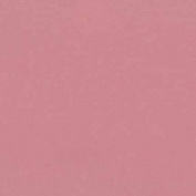 Cotton Fabric - Metre - Kona - 2017 New Colours - Foxglove