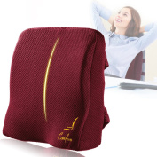 Comfom Memory Foam Lumbar Pillow - Office Home Back Seat Cushion - Pain Relief Comfort Chair Support - Wide Soft Ergonomic Orthopaedic Design