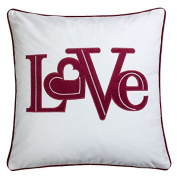 Homey Cosy Valentine's Day Applique White Velvet Throw Pillow Cover,Letter Love with Red Piping Fuzzy Cosy Home Decoration Gift Idea 20 x 20,Cover Only