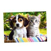 Baoblaze Decorative 5D DIY Diamond Painting Frameless Picture Poster Fr Home Shop Decor 30*30cm/40*30cm - Cat And Dog, as described