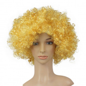 ASDOMO Funny clown wig, Fashion Holiday Fans party party supplies festive colour wig funny clown wig