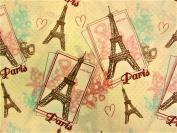 Paris Love 100% Polyester (FLAT SHEET ONLY) Size TWIN Girls Kids Bedding