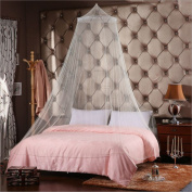 Bureze Bedding Mosquito Net Princess Curtain Hung Dome Fly Insect Protection Bed Outdoor Curtain Dome