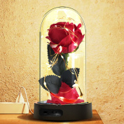 Beauty and the Beast Rose, Red Silk Rose in a Glass Dome with Fallen Petals & Led Light on a Base, 7 Colour Led Lights Changing for Home Decor - Gift for Valentine's Day Wedding Anniversary Birthday