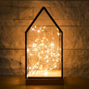 NCYP House Shape Gift Decor Terrarium Lantern Containers with 3m String Light Set