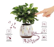 Music Flower Pot, Wireless Bluetooth Speaker, LED Light Smart Touch Music Flower Pot, Multicolor Night Light, Play Piano Music on a real plant with colourful LED lights