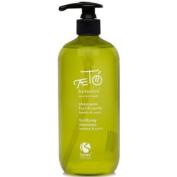Shampoo FORTIFICANTE 'AETO Botanica Bamboo & Yucca L