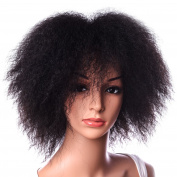 Silike Afro Kinky Wig Kanenkalon Fibre Fashion Wigs For Women African American Female Wig Heat Resistant Fibre