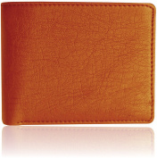 Accezory Stylish casual wallet for men