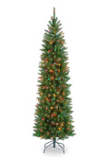 National Tree 2.3m Kingswood Fir Pencil Tree with 350 Multicolor Lights, Hinged