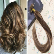 LaaVoo 41cm Nail Tip Extensions Straight Brown Hair Caramel Highlights (Colour #4/27) Remy Utip Hair Extensions Hot Fusion Human Hair 100s 0.5g/s