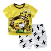 Newborn Infant Baby Boys Girls Tops +Pants Set Cartoon Lion Outfits Unisex Summer Clothes