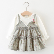 Toddler Baby Girls Dress Long Sleeve Party Princess Dress Flower Printed Dress