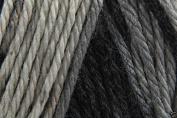 Caron Simply Soft Ombre Acrylic Aran Knitting Wool Yarn 113.4g -8042 Stormy Wthr