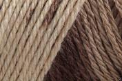 Caron Simply Soft Ombre Acrylic Aran Knitting Wool Yarn 113.4g -8012 Latte Brown